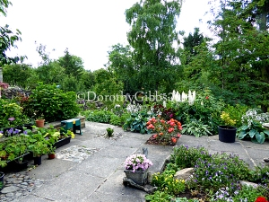A patio area with many pots near the potting shed.